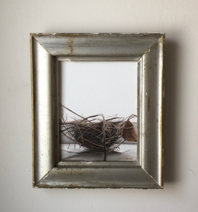 "Bird's Nest 12.5"" x 14.5"" with frame $395"