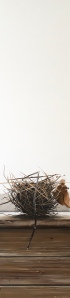 Bird's Nest 12 x 48 SOLD