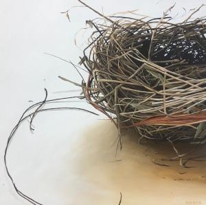"Bird's Nest. 36""x36"". $3400"